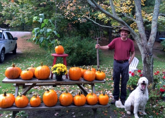 Tim charly and pumpkin harvest