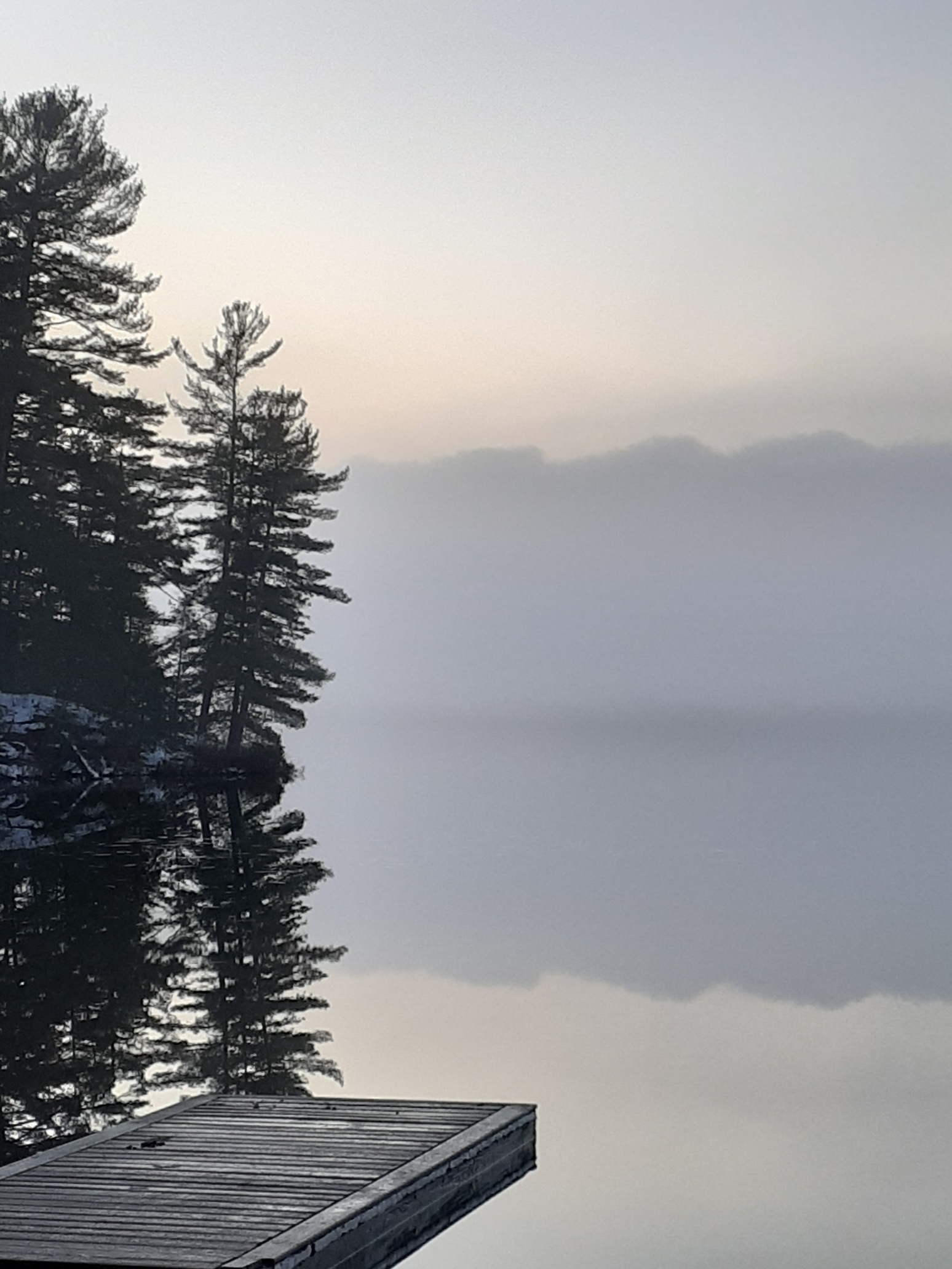 Cole Lake